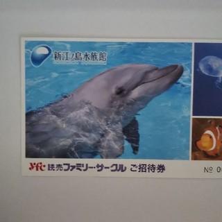 maiko様 専用です!!江の島水族館  2枚(水族館)