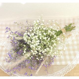 (中)35㎝ かすみ草とブルーファンタジアのスワッグ♡(ドライフラワー)