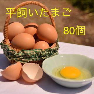 平飼いたまご ✴︎高原卵10個入り8パック✴︎ 国産もみじの卵 新鮮(野菜)