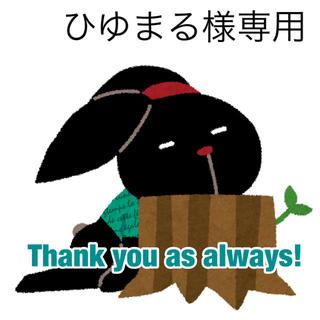 5/28 ひゆまる様専用(その他)