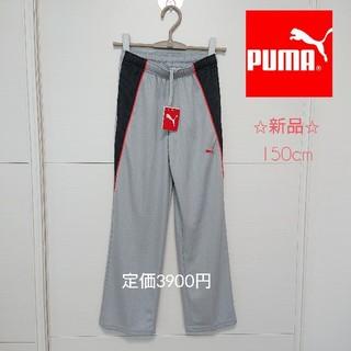 プーマ(PUMA)の新品✩PUMA プーマ ジャージ 下  150cm(その他)