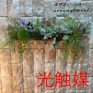 光触媒 人工観葉植物 抗菌消臭 ウォールグリーン5555