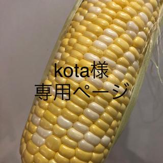 kota様専用ページ とうもろこし(野菜)
