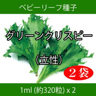 ベビーリーフ種子 B-16 グリーンクリスピー(立性) 1ml 約320粒x2袋(野菜)