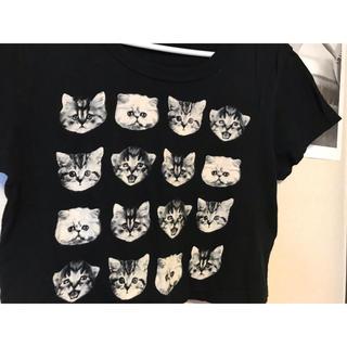 アーバンアウトフィッターズ(Urban Outfitters)のUrban outfitters 子猫プリント クロップドTシャツ XS(Tシャツ(半袖/袖なし))