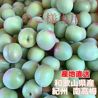 【最高品質】完熟梅 15㎏ サイズ指定2L  紀州南高梅(漬物)