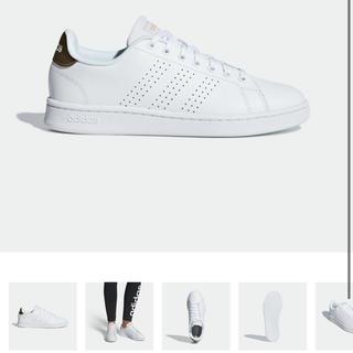adidas - アディダス 24.5 ホワイト 白
