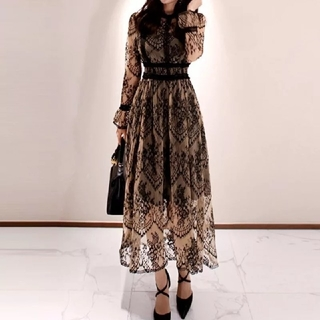 新品 シースルーレースエレガントロングワンピース 黒 ドレス(ロングワンピース/マキシワンピース)