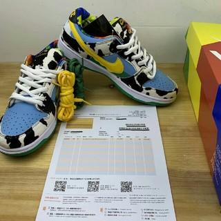 NIKE - 28.5cm Nike Dunk Low Ben Jerry's SB
