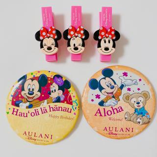 Disney - 【値下げ】ハワイ アウラニ ディズニー 限定 バースデー& ウェルカム 缶バッジ
