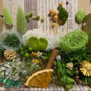 グリーン No.430 ハーバリウム花材 アロマワックス(プリザーブドフラワー)