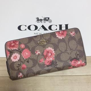 COACH - 新品 [COACH コーチ] 長財布 ピンクのデイジー 花柄 シグネチャー