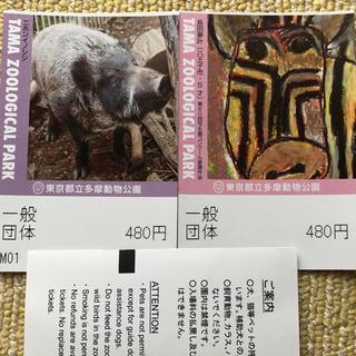 東京都立多摩動物公園一般団体入場券2枚(動物園)