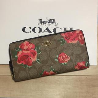 COACH - 新品 [COACH コーチ] 長財布 赤い花 花柄