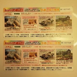 上野動物園 多摩動物公園 共通入場引換券 2枚セット(動物園)