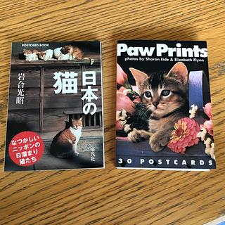 ポストカード2個セット 岩合光昭さん 日本の猫 と ネコちゃんの休日