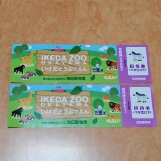 池田動物園 入園招待券 岡山県 チケット 入園券 無料(動物園)
