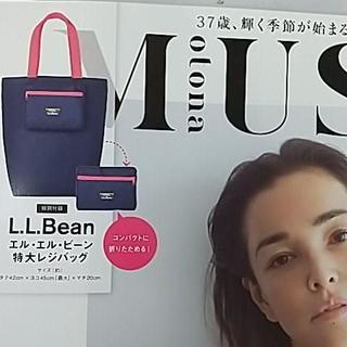 otona MUSE 7月号 【付録のみ】 L.L.Bean 特大レジバッグ(その他)