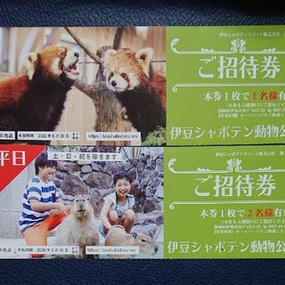 3名様分♥伊豆シャボテン動物公園(動物園)