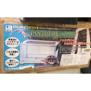 トイプー様専用 パンテオン ホワイト 6035(爬虫類/両生類用品)