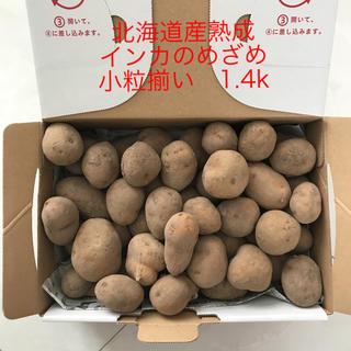 北海道産熟成インカのめざめ小粒揃い 1.4k(野菜)