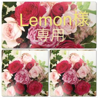 Lemon様専用(その他)