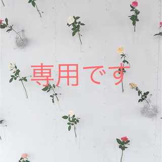 ボウダンショウネンダン(防弾少年団(BTS))の【専用】花様年華 pt.1 トレカ無し CD DVD(K-POP/アジア)