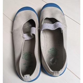 上靴 23cm(スクールシューズ/上履き)