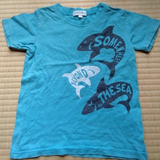 3can4on - 3can4onのサメのTシャツ100
