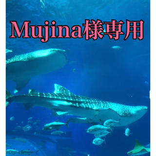 mujina様専用(その他)