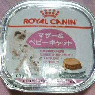 ROYAL CANIN - ★ロイヤルカナン マザー&ベビーキャット★