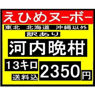 ★わか大9  えひめヌーボーの 訳あり 河内晩柑 13キロ(フルーツ)