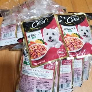 シーザー(CASAR)のCesar シーザー 厳選ビーフ入り野菜入り とろみタイプ 70㌘✕31袋(ペットフード)