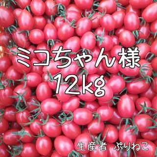 ミコちゃん様専用 アイコ12kg ミニトマト 農家直送(フルーツ)