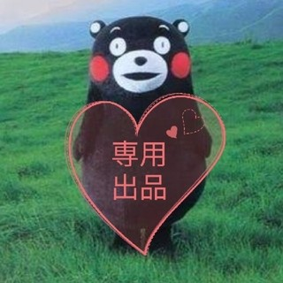 愛さま 専用ページ(その他)