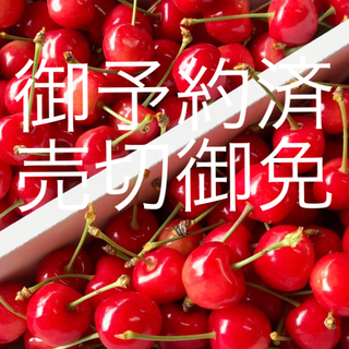 たれみみウサギ様専用 高級 さくらんぼ 佐藤錦 M〜L 秀 1キロ バラ (フルーツ)