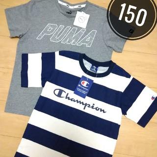 Champion - 新品 150サイズ チャンピオン プーマ 半袖Tシャツ 男の子