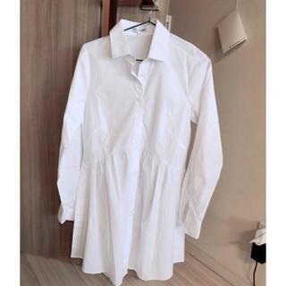ナラカミーチェ(NARACAMICIE)の新品未使用。ナラカミーチェ フリルシャツ(シャツ/ブラウス(長袖/七分))