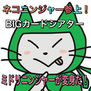 ビッグ ペープサート ネコニンジャー ミドリ(知育玩具)