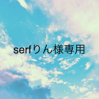 serfりん様専用 (3日にご購入分)(その他)