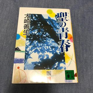 聖の青春(文学/小説)