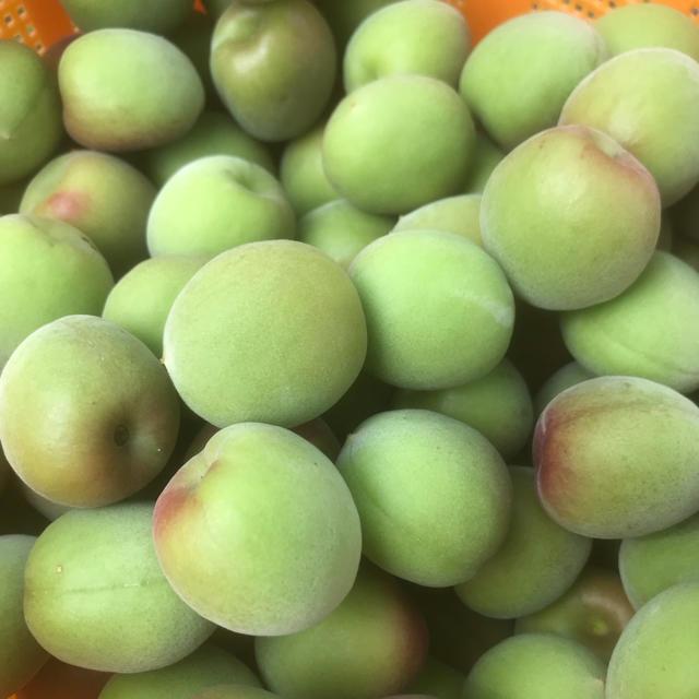 6月初旬まで(^^)梅の王様✴︎紀州南高梅✴︎2kg 食品/飲料/酒の食品(フルーツ)の商品写真