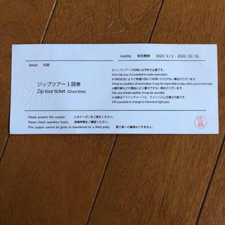 LOTTE ARAI RESORT ジップツアー 1回券(スキー場)