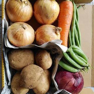 野菜の詰め合わせ(野菜)