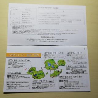 ハンキュウヒャッカテン(阪急百貨店)の六甲山レジャー施設への入場券(2枚)グループ優待券(美術館/博物館)