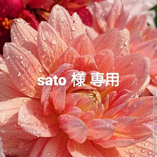 sato様専用(哺乳ビン用消毒/衛生ケース)