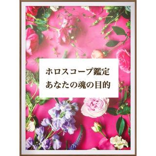 ホロスコープ鑑定 オラクルメッセージ付き(趣味/スポーツ/実用)