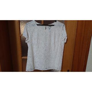 アルファキュービック(ALPHA CUBIC)の白レース トップス 半袖(シャツ/ブラウス(半袖/袖なし))