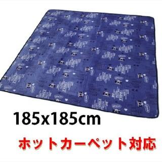 特別価格 ラグカーペット2畳 ホットカバー対応 手洗いOK(ホットカーペット)