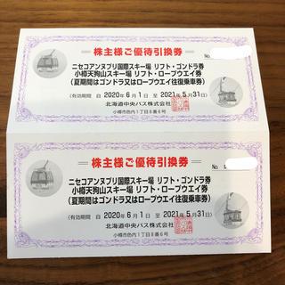 ニセコ アンヌプリ 北海道中央バス 株主優待2枚セット(スキー場)